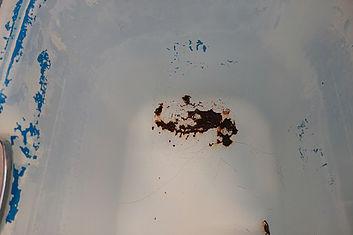 浴槽 サビ